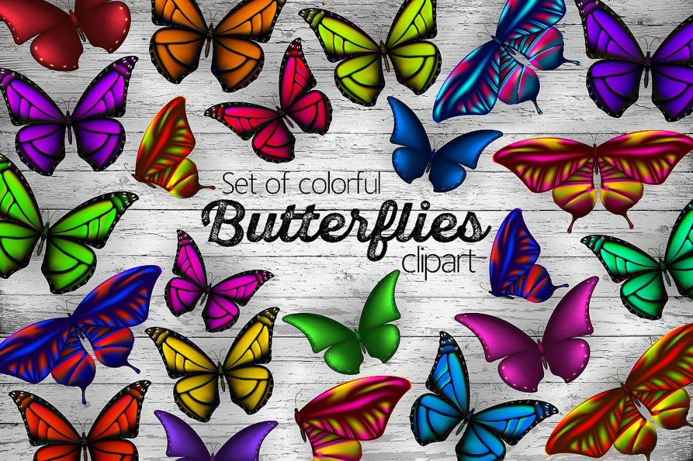 medium resolution of set of colorful butterflies clipart example image 1