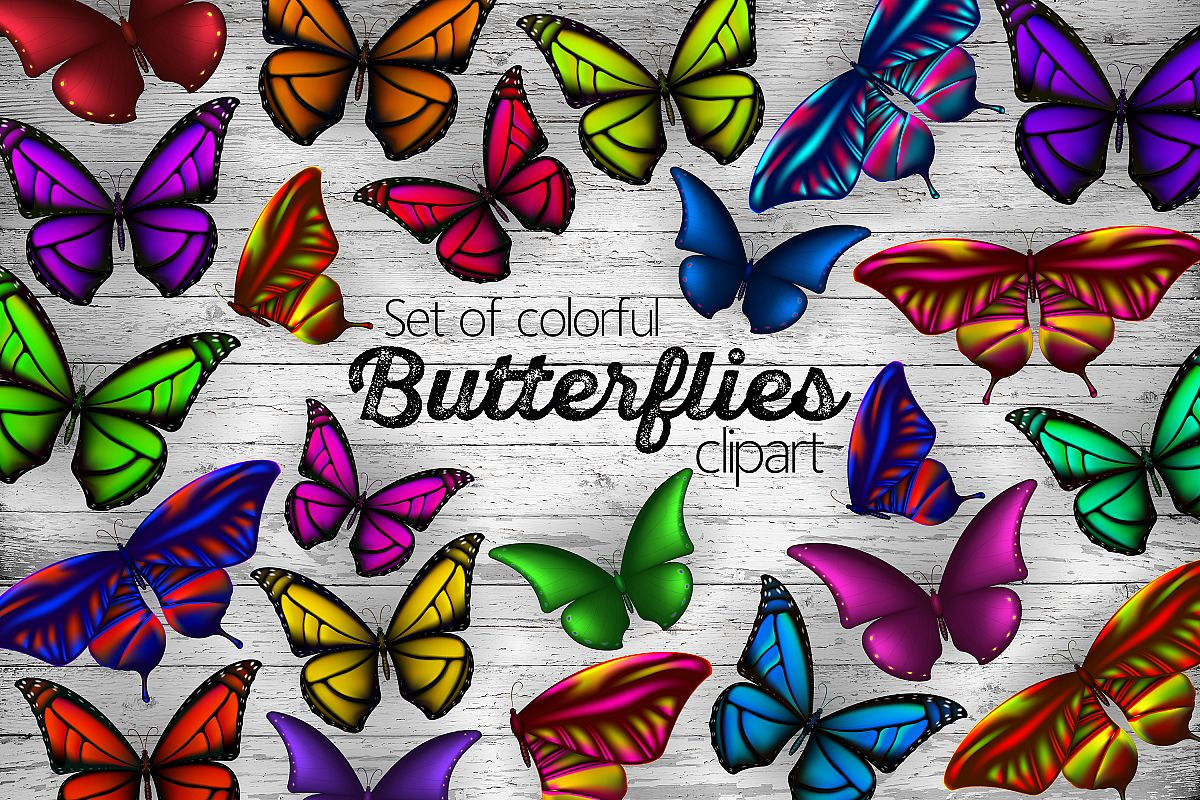hight resolution of set of colorful butterflies clipart example image 1