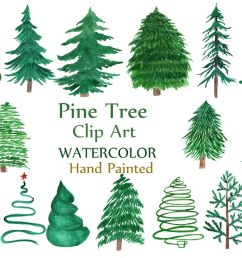 watercolor pine trees clipart example image 1 [ 1162 x 774 Pixel ]