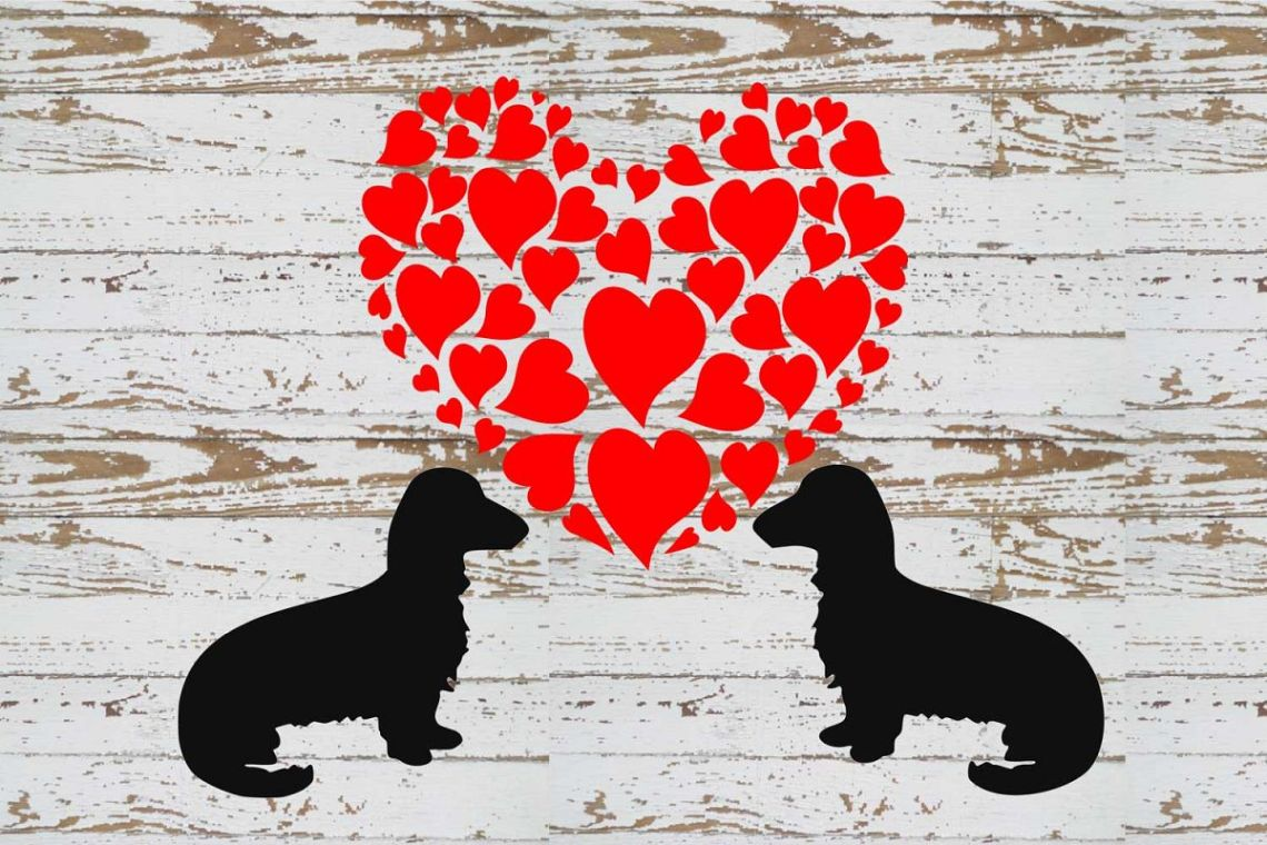 Download Dachshund LOVE svg and graphic s file (197203) | Cut Files ...