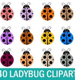 40 lady bug clipart cute lady bug clipart ladybug graphics example image 1 [ 1200 x 800 Pixel ]