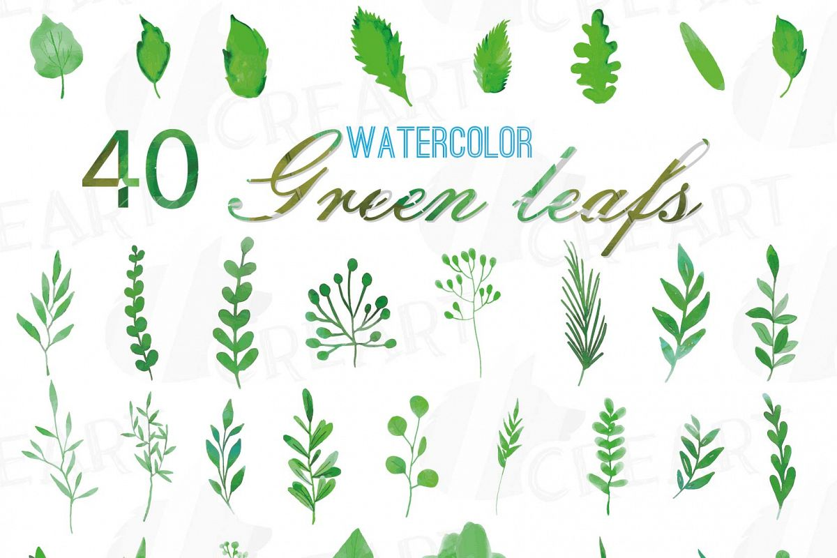 Green Leaves And Branches Watercolor Clip Art Pack Hand