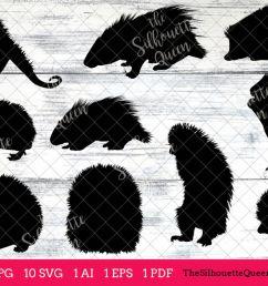 porcupine silhouette clipart clip art ai eps svgs jpgs pngs  [ 1200 x 800 Pixel ]