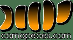 logo_transparente_trazado