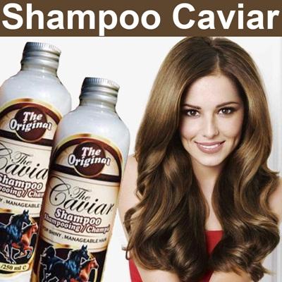 caviar shampoo asli