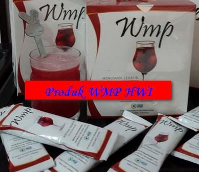 Cara Diet yang Sehat dengan WMP PT.HWI