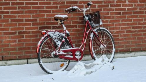 171114-122803-cykel-IMG_5765