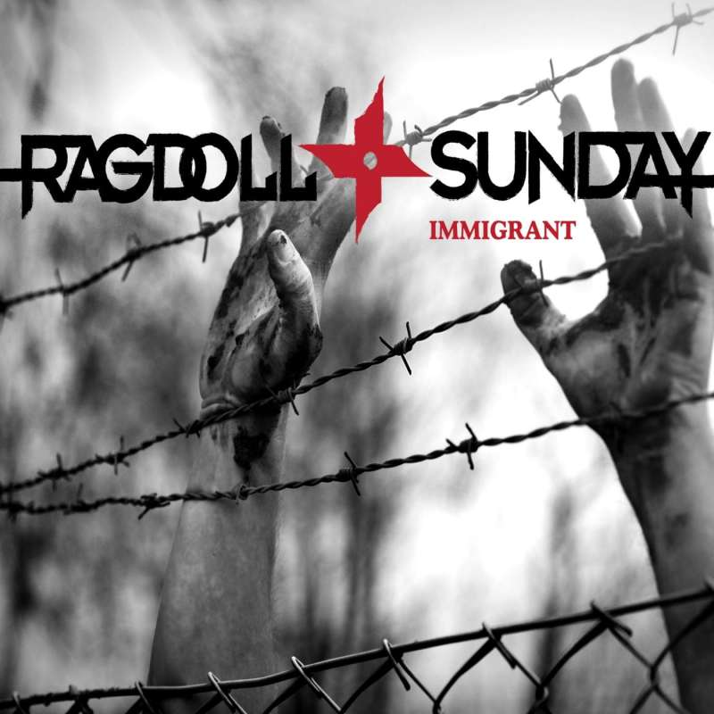 Ragdoll Sunday - Immigrant