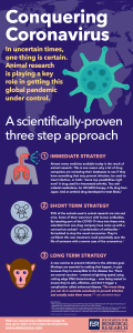 Animal research is playing a key role in getting the coronavirus global pandemic under control. This infographic outlines the three-step strategic approach being used by the biomedical research community.
