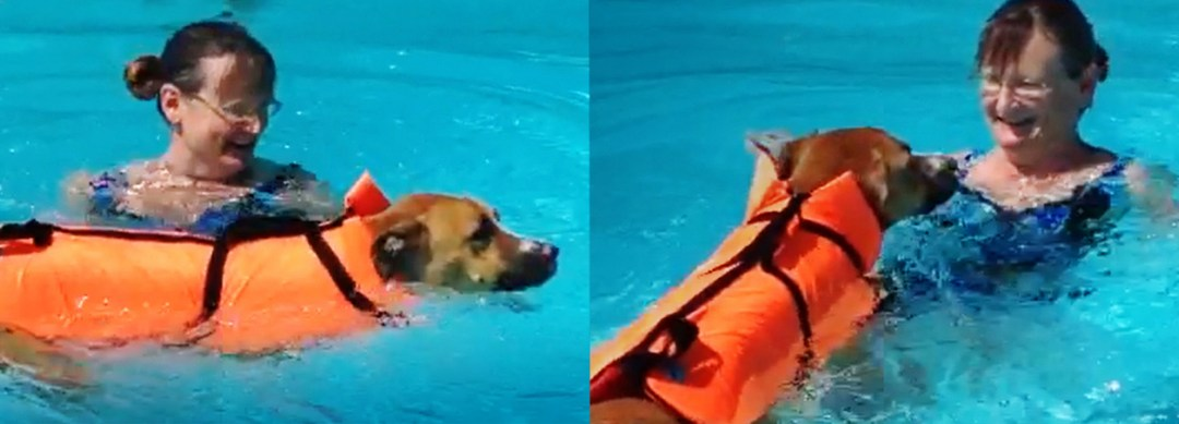 Sandy swims with Kaylee Bear. (Photo: Sandy Hively)