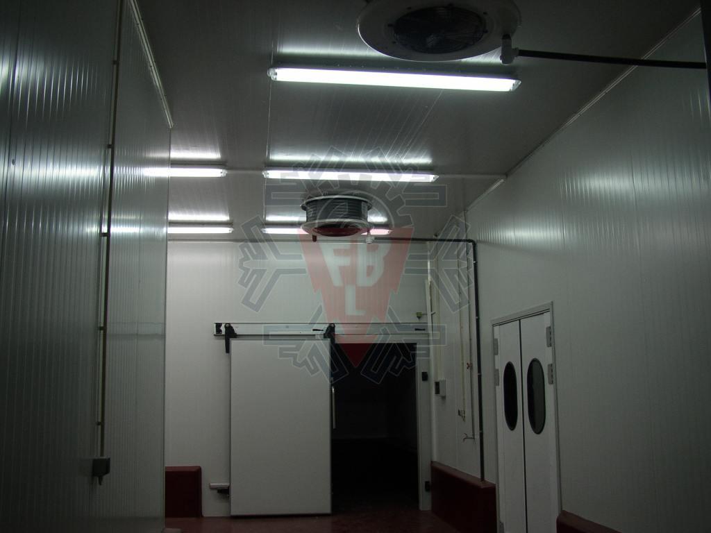 Camara Refrigerados 4 - F. Brigido