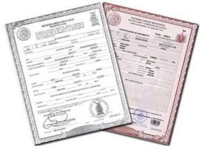 Resultado de imagen para acta de nacimiento en republica dominicana
