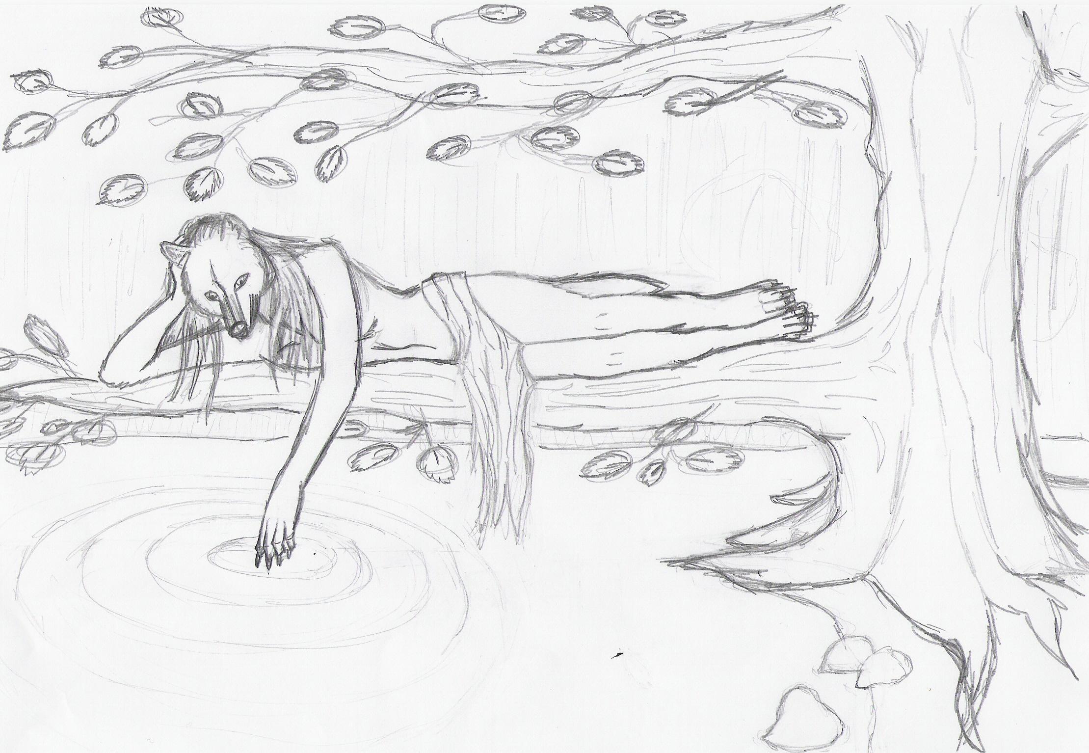 Tree wolf sketch by designerdragon on deviantART