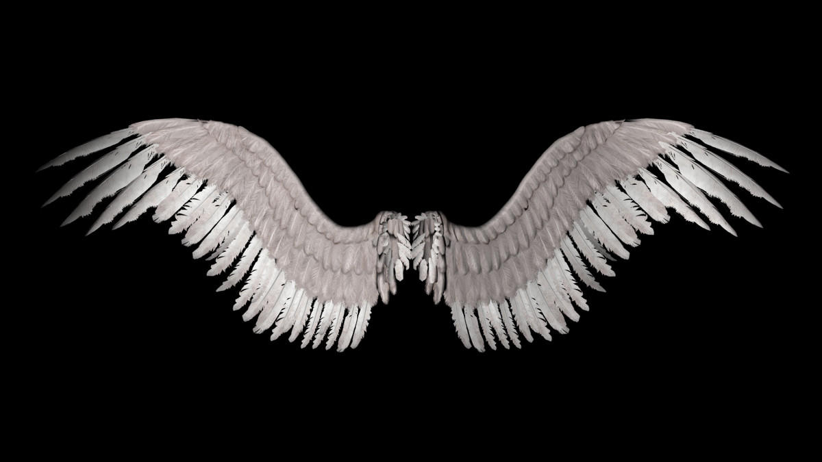 New Angel Wings By Shadavarstock On Deviantart