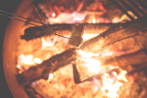 Two marshmallows on a skewer are held over a blazing campfire.