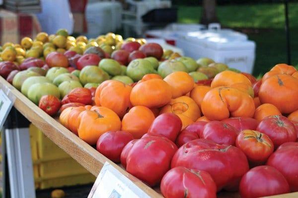 farmersmarket-tomatoes2