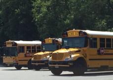 Three Buses2