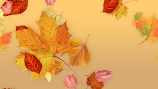 Leaves - Fall Title for Final Cut Pro X
