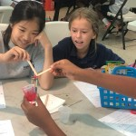 FCS Elementary Science Experiment