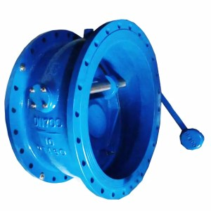blue Butterfly inclined seat check valve