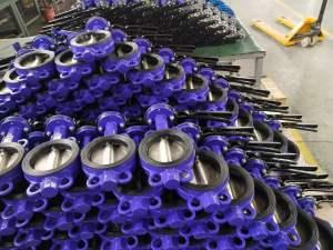 Lug wafer butterfly valve -2.jpg