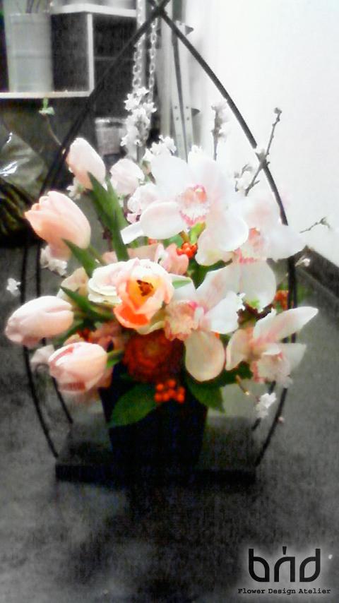 BUD2012迎春