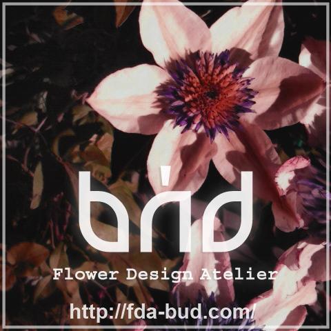 F.D.A. BUD http://fda-bud.com/
