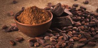 Barry Callebaut partnership setting new standard for sourcing cocoa