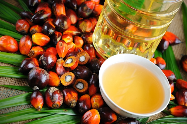 Iceland to remove palm oil from own-brand in UK first