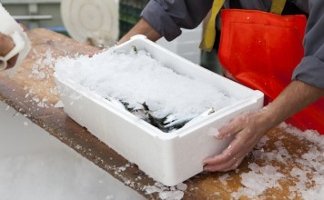 Brexit guide launched for UK seafood industry