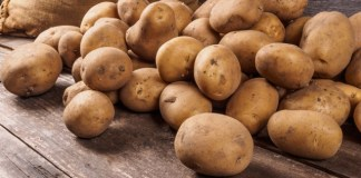 Cargill ploughs $22.5m into Danish potato starch production facility