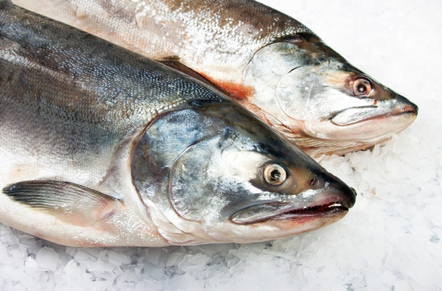 Latest figures show changing face of UK fish sales