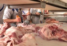 UK to capitalise of hunger for British pork in Far East