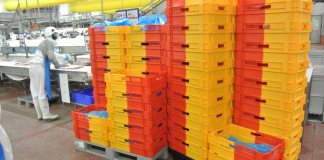 Stacking and storing made easier with two-colour crates