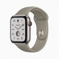 Apple Watch Series 5 in: Brushed titanium
