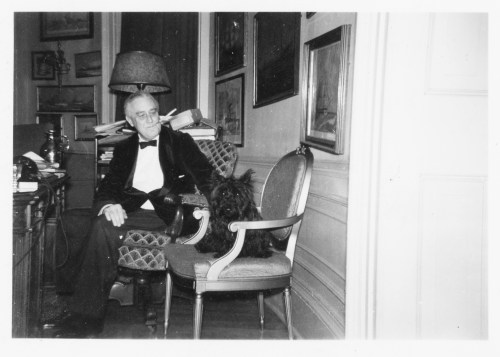 FDR and Fala in the White House study, Washington, DC, December 20, 1941. NPx 59-109.