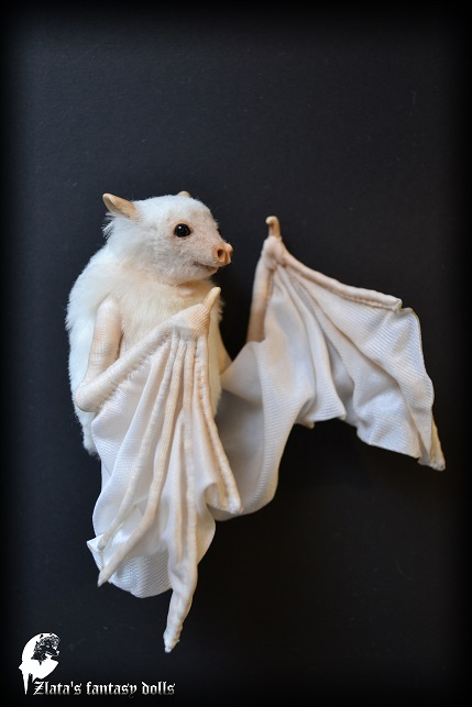 Zlatas fantasy dolls  White bat