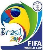 2014ワールドカップ ブラジル大会