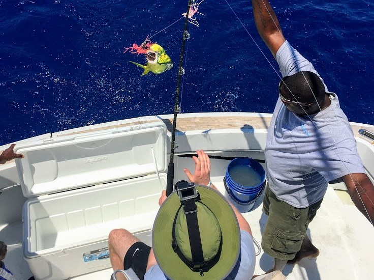 An Extensive Travel Guide For The Bahamas: Ocean Fishing
