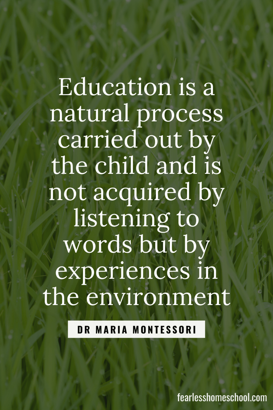 Education is a natural process carried out by the child and is not acquired by listening to words but by experiences in the environment dr maria montessori homeschooling quote