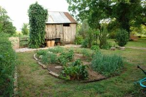 You'll Need It! The Ornamental Kitchen Garden
