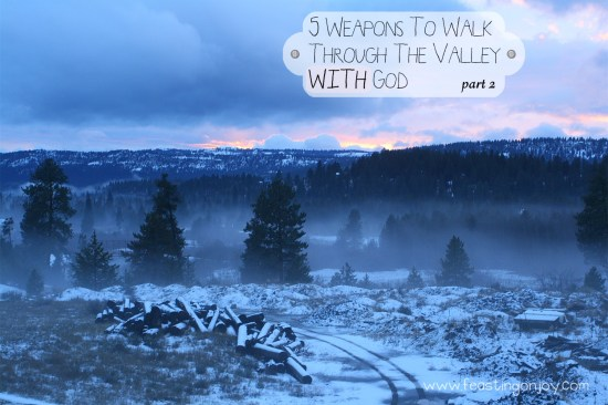 5 Ways To Walk Through The Valley WITH God Part 2