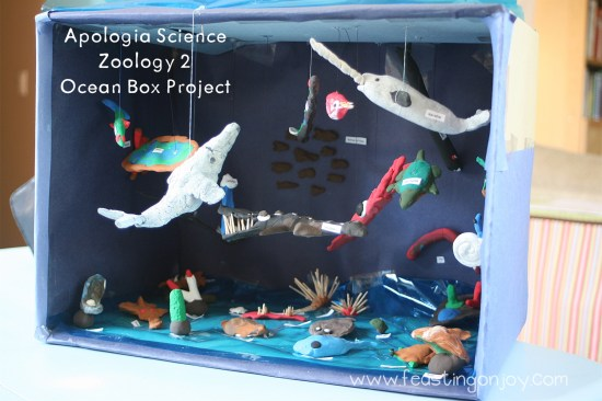 Apologia Science Zoology 2 Ocean Box Project