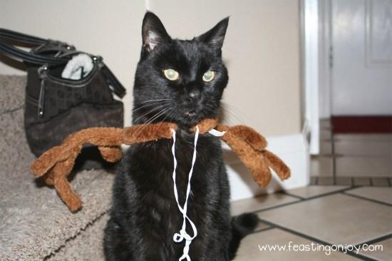 Max With Reindeer Headband on
