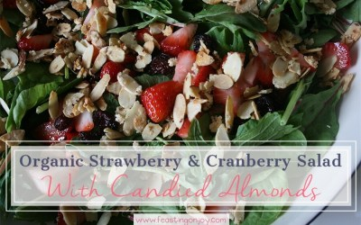 Organic Strawberry and Cranberry Salad with Candied Almonds