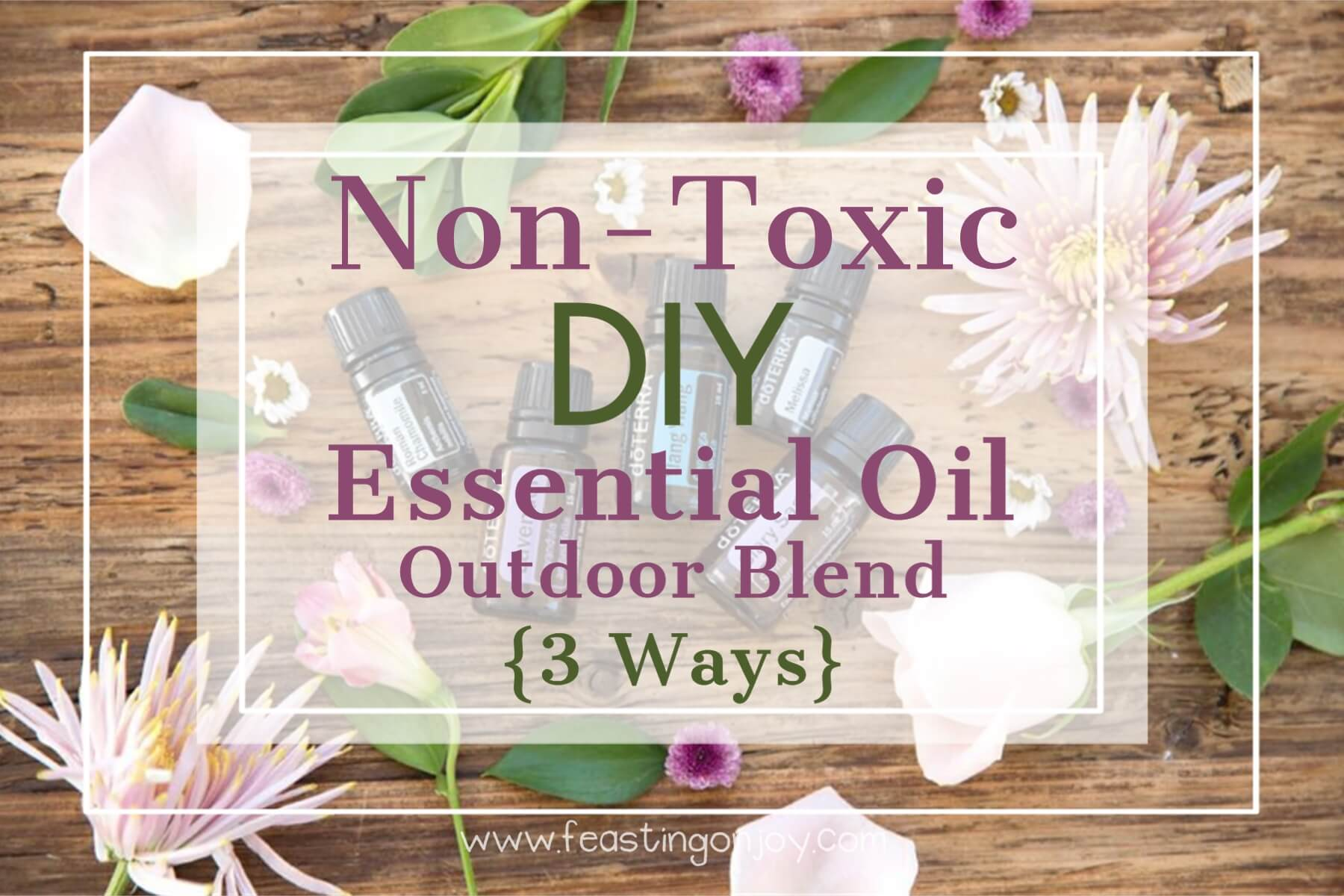 Non Toxic Diy Essential Oil Outdoor Blend 3 Ways