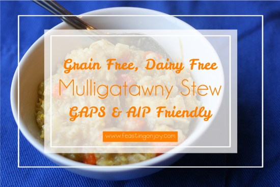 Grain Free, Dairy Free Mulligatawny Stew | Feasting On Joy