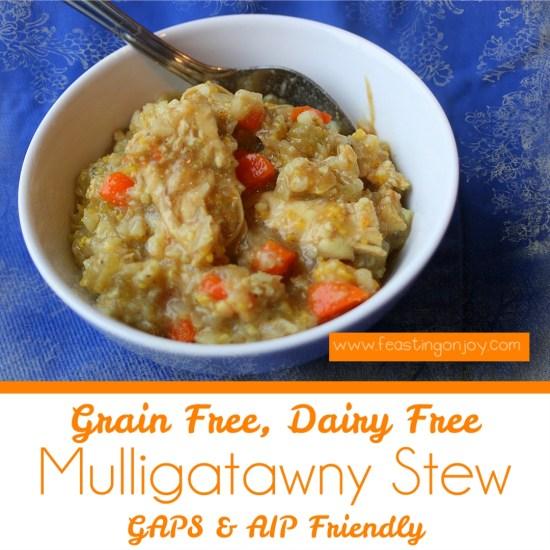 Grain Free, Dairy Free Mulligatawny Stew 2 | Feasting On Joy