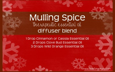 Mulling Spice Therapeutic Essential Oil Diffuser Blend