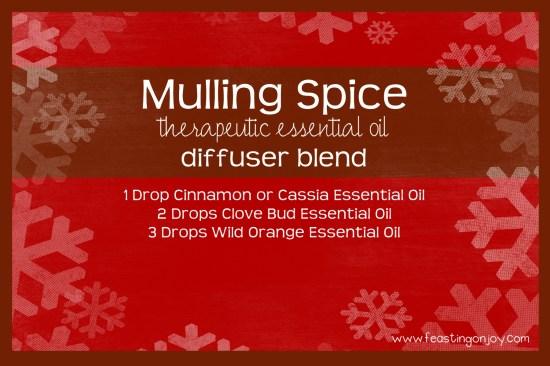 Mulling Spice Therapeutic Essential Oil Diffuser Blend
